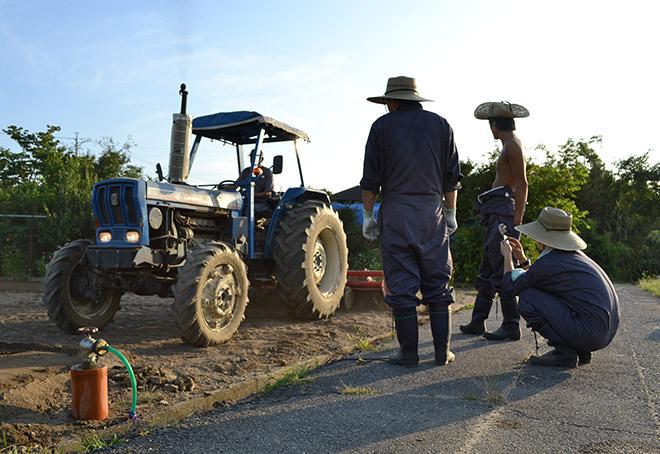 ぐいぐい農園-農業用トラクター4