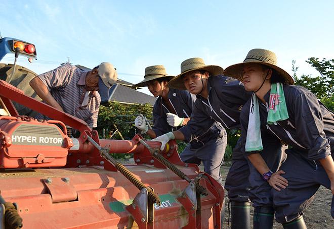ぐいぐい農園-農業用トラクター2