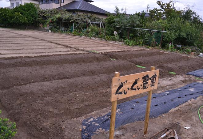 ジャガイモ植え完成
