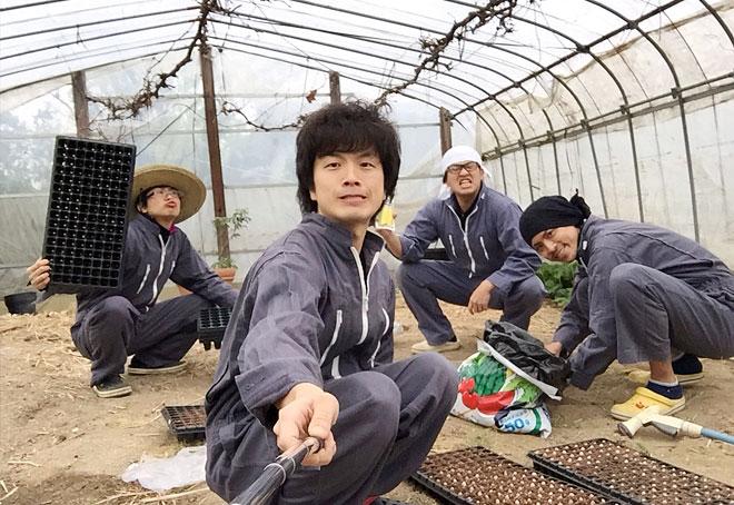 韓国から一時帰国 農作業