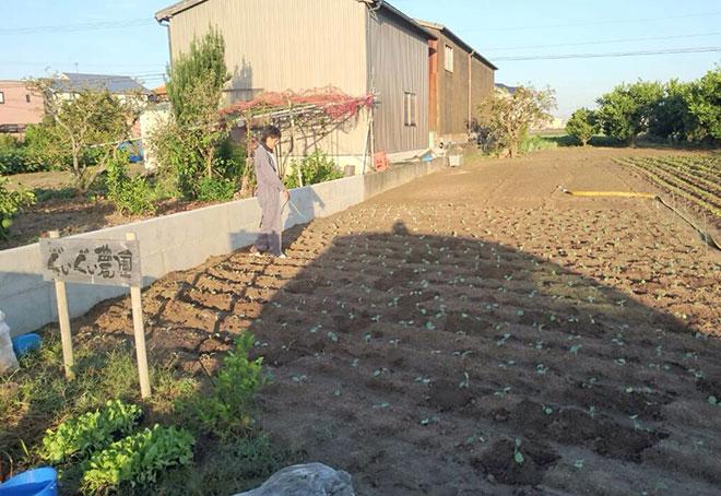 ぐいぐい農園